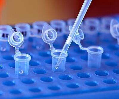 Biyoloji kitabından evrim teorisi çıktı, DNA testi ve tüp bebek tedavisi müfredata girdi