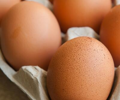 Eylül ayında yumurta üretimi azaldı