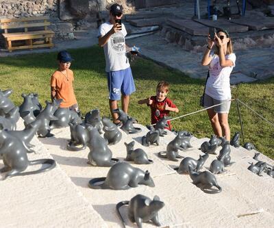 'Apollon Smintheus Tapınağı'nda ziyaretçileri fareler karşılıyor