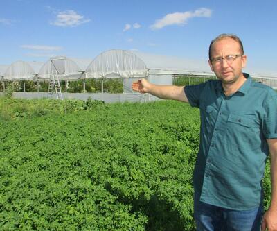 Doğal beslenmek için köyüne yerleşti, şimdi üretimini yapıyor