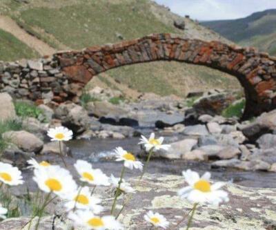 Valilik açıkladı... 'Çalındı' denilen köprü yıkılmış!