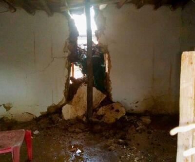 Ceylanpınar'da yağışlar barınakları yıktı, 18 hayvan telef oldu