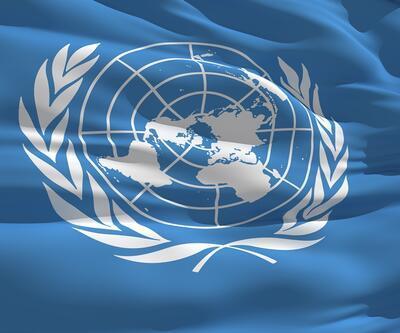 Birleşmiş Milletler'den Suudi Arabistan'a sert kınama