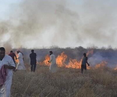 Irak'taki tarla yangınlarının sebebi: İhmalkarlık
