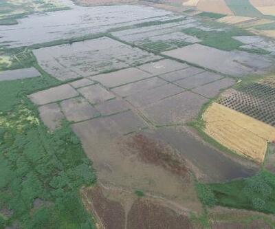 Bandırma ve Karacabey'de binlerce dönüm tarım arazisi su altında kaldı