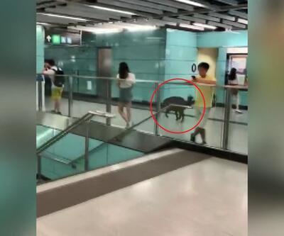 Çin'de metro istasyonuna girdi, görenler büyük panik yaşadı: 1 yaralı