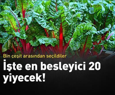 İşte en besleyici 20 besin