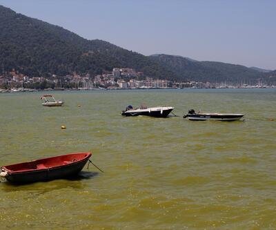 Denizin rengi sarıya döndü... Vatandaşlar tedirgin