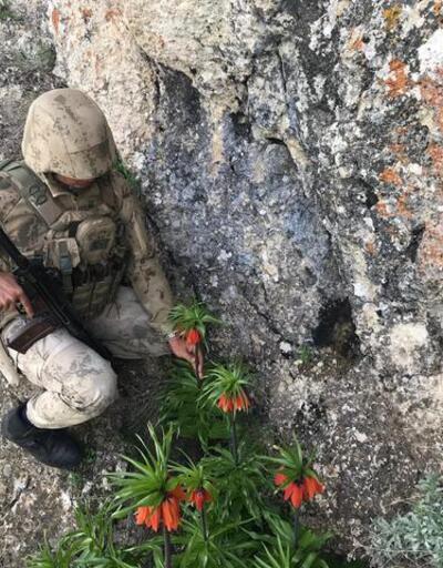 Ters lale Jandarma koruması altında