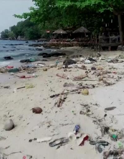 BM: İnsanoğlu tüm ekosistemleri tahrip etti