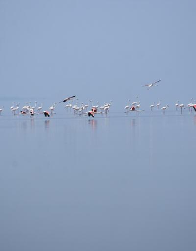 Tuz Gölü,doğal fotoğraf stüdyosu