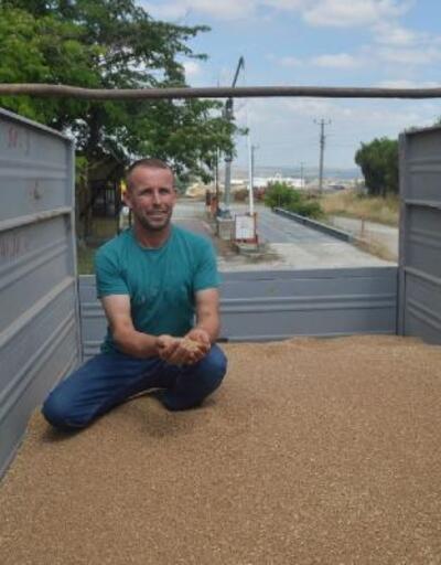 Keşan'da ilk buğday kilosu 2.50 TL'den alıcı buldu