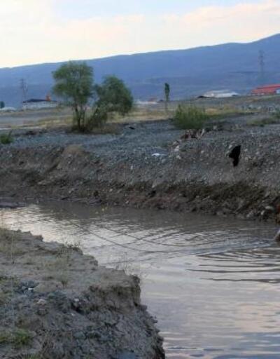 Sulama kanalına düşen atı itfaiye kurtardı