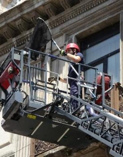 İstiklal Caddesi'nde itfaiye ekiplerinin martı kurtarma operasyonu