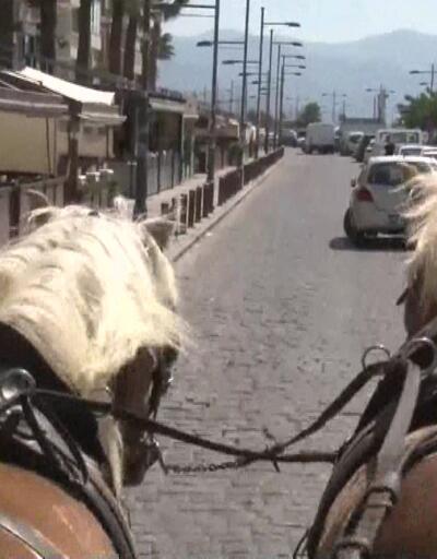 Büyükşehir fayton taşımacılığını yasakladı
