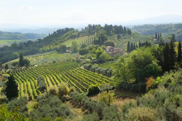 Tarihin içinde yürümek: San Gimignano