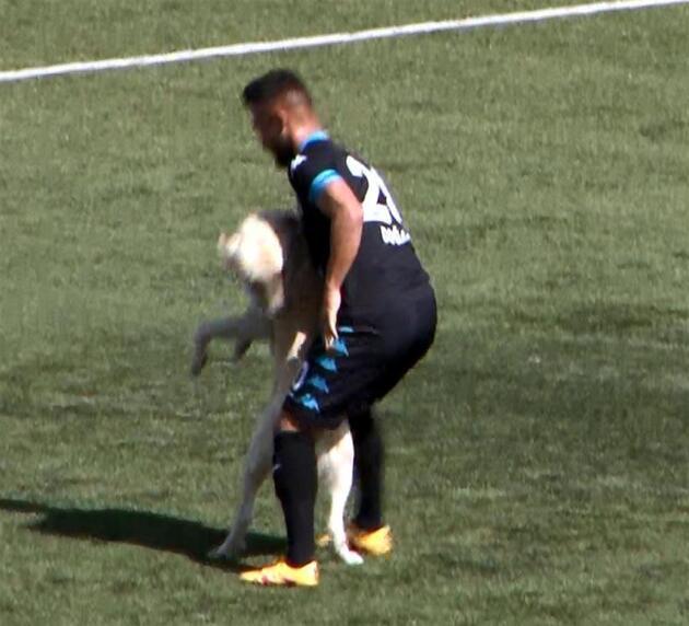 Köpek sahaya girdi, futbolcu çıkarmak istedi ancak...