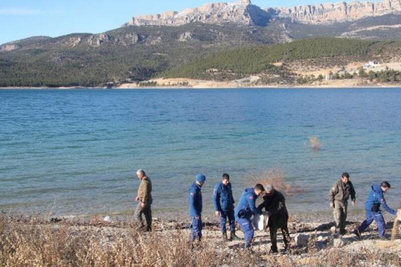 Ermenek'te su kuşları ve yaban hayvanlara yem bırakıldı