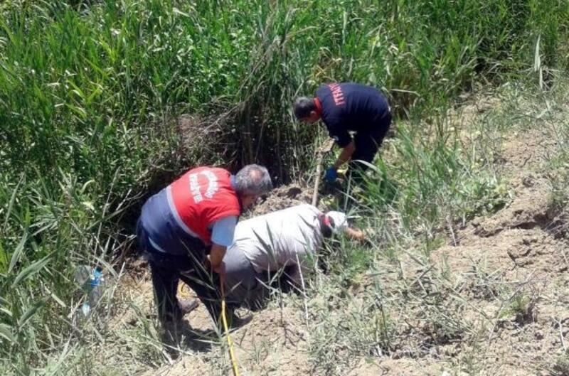 Kayıp inek, düştüğü bataklıktan kurtarıldı