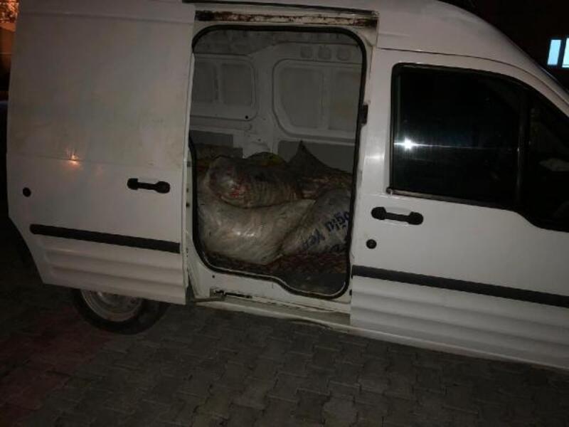Van'da, kaçak avlanan 500 kilo inci kefali ele geçti