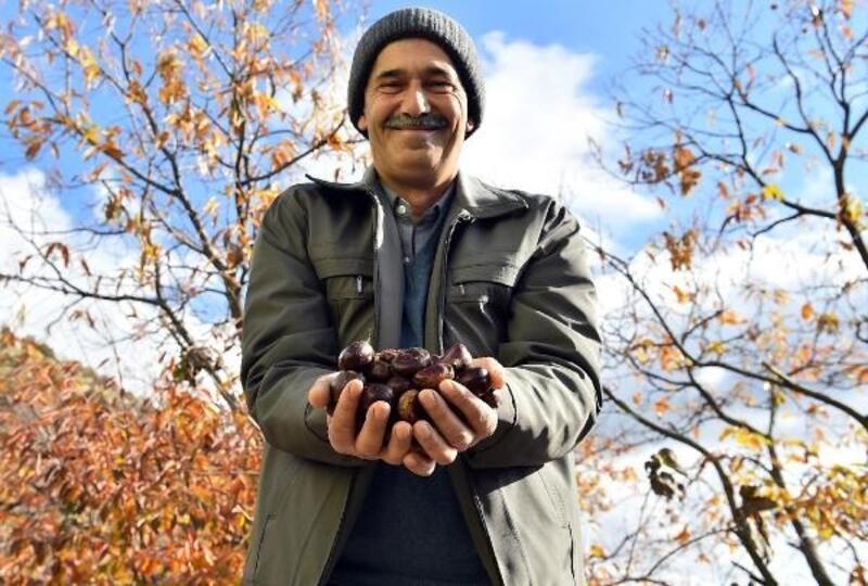 Simav'ın tescilli lezzeti Avrupa'ya ihraç ediliyor